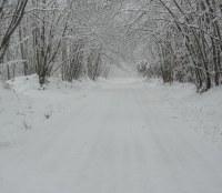 Informazioni Settore Viabilità sulla condizione Neve
