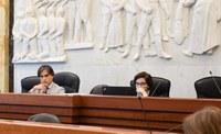 Regolamento degli indirizzi e delle procedure per le nomine, le designazioni e le revoche dei rappresentanti della Città Metropolitana di Reggio Calabria presso organismi partecipati
